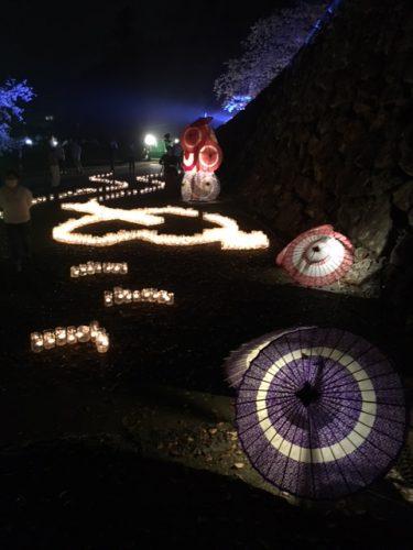 城山公園夜桜ライトアップ